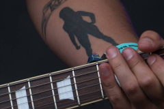 wicked_stone_bands_like_alterbridge_black-stone-cherry_Down_ACDC_live_photos_rambling_man_fair_British_Lion64