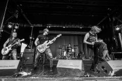 wicked_stone_bands_like_alterbridge_black-stone-cherry_Down_ACDC_live_photos_rambling_man_fair_British_Lion81